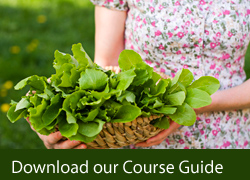 Download our Course Guide