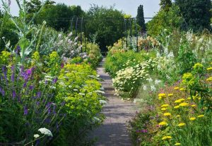 RHS-Wisley-Herbaceous-Border