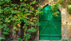 heritage-horticulture-testimonial