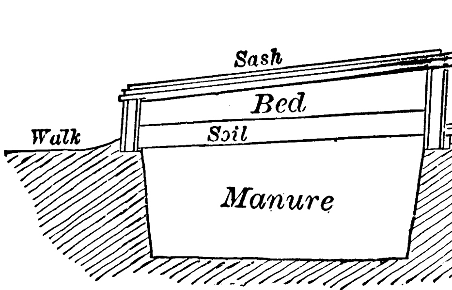 hot-beds