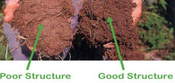 Flocculation and Dispersion in Soils