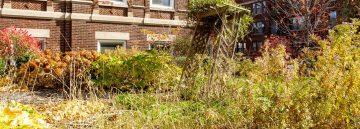 RHS Horticulture: Garden Planning – Site Assessment Part 1